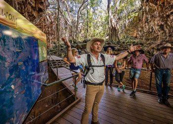 gulf savannah tours